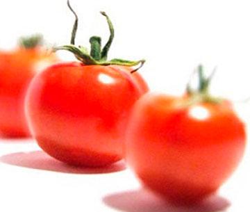 service-pomodori